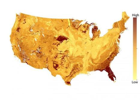 Deforestation of sandy soils a greater climate threat | Sustain Our Earth | Scoop.it