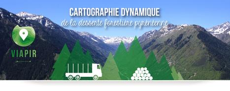 VIAPIR : un outil au service des professionnels Pyrénéens de la forêt et du bois | Vallée d'Aure - Pyrénées | Scoop.it