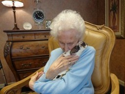 Bunny Therapy: Senior Care Warm and Fuzzy | Senior Assisted Living | Scoop.it