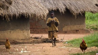 Cost of hungry children revealed   Agriculture, Climate & Food security   Scoop.it