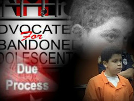 Beyond Scared Straight -Juvenile Justice Reform: Judge to rule by Aug. 7 whether to suppress Cristian Fernandez interrogations Whether boy understood his rights or was tricked by police was argued.   Juvenile Justice   Scoop.it