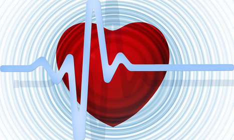 Foods and Beverages that Increase Coronary Heart Disease Risk | Heart Disease - Advances, Knowledge, Integrative & Holistic Treatments | Scoop.it