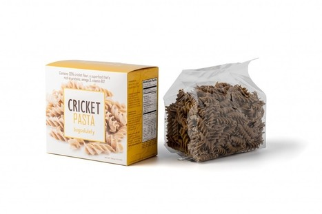 """Bugsolutely Launches """"Superfood"""" Cricket Pasta, as Edible Insect Trend Develops 