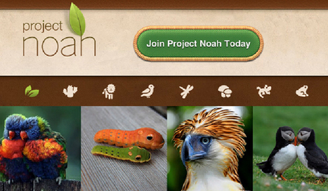 Proyecto Noah: Convierte a tus alumnos en naturalistas - aulaPlaneta | Educacion, ecologia y TIC | Scoop.it