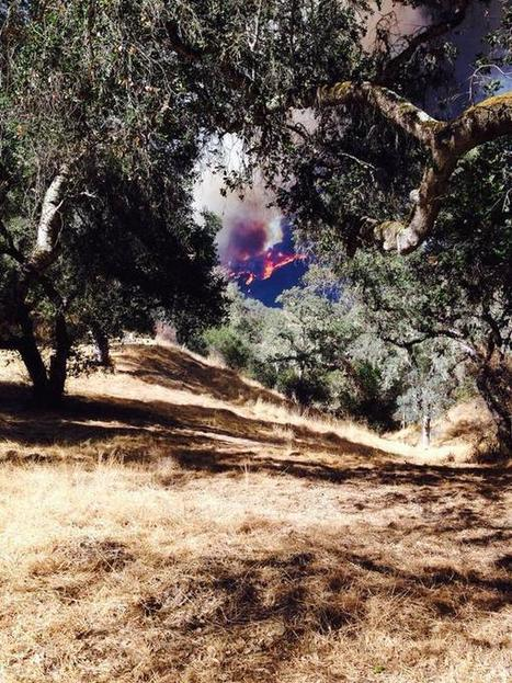 Five engines, helicopters, and Cal Fire respond to wildfire in Monterey | The Blog's Revue by OlivierSC | Scoop.it