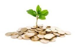 ¿Cómo se determina la rentabilidad de un fondo de inversión? | FUNCIONES FINANCIERAS | Scoop.it