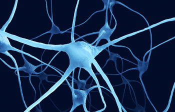 Unravelling the mystery of the most common genetic cause of motor neuron disease   DNA & RNA Research   Scoop.it