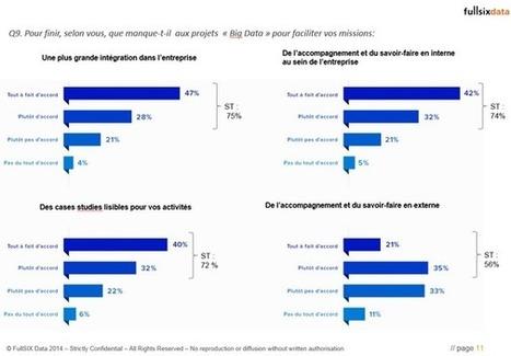 Le futur incontournable de la Big Data vu par les décideurs marketing français, selon une étude Limelight pour FullSIX - Offremedia | Dessine-moi une data | Scoop.it