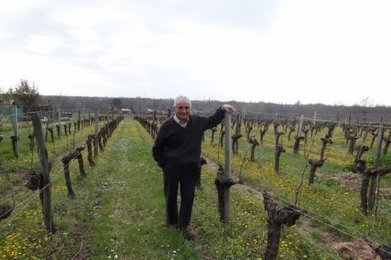 "Pesticides : un ancien viticulteur girondin atteint du cancer témoigne | ""Viticulture en gironde"" 