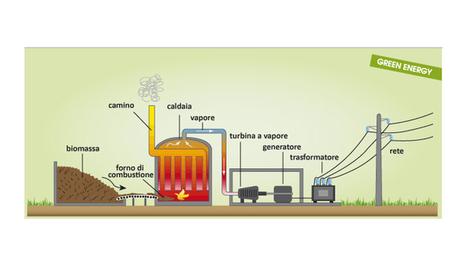 Le biomasse: l'energia pulita poco conosciuta - Stile Naturale | Energie alternative attraverso la rivoluzione sostenibile | Scoop.it