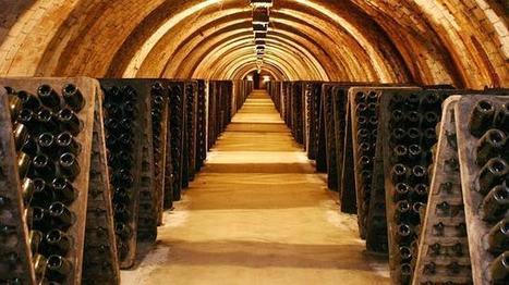 Las rutas del vino más visitadas en España | Hedonismo low cost - Gastronomía | Scoop.it