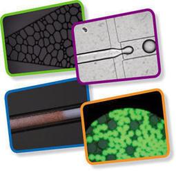 Microfluidique : de l'outil de laboratoire au développement de procédé | Procédés Nouvelles Technologies | Scoop.it