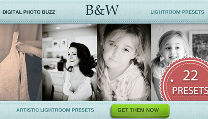 Artistic Black and White Lightroom Presets | Digital Photo Buzz | Lightroom Tools | Scoop.it