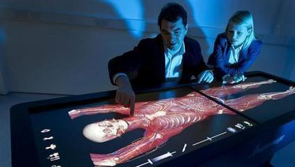 Lee Kong Chian medical school to teach anatomy on touch-screen table | Technology and science in the classroom. | Scoop.it
