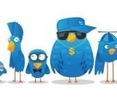 Del microblogging a la microsegmentación, siguiente paso de Twitter | Aprendizaje 2.0 | Scoop.it
