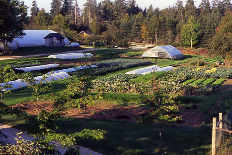 Organic agriculture: deeply rooted in science and ecology | Conservation, Ecology, Environment and Green News | Scoop.it