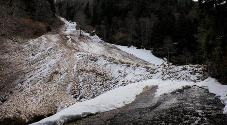 Avalanche rive droite de la neste de Rioumajou - Orion Molinier | Vallée d'Aure - Pyrénées | Scoop.it