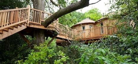 The Treehouse at Harptree Court - Canopy & Stars | Real Estate Flyers and Marketing | Scoop.it