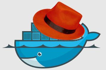 Red Hat: We've got a corker for Docker Linux locker app hawkers - Register | Peer2Politics | Scoop.it