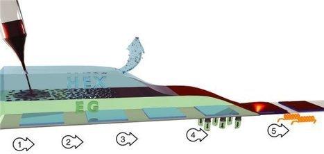 Nascem primeiros painéis de fotossíntese artificial | tecnologia s sustentabilidade | Scoop.it