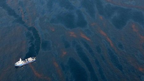 Dolphins in 'bad shape' after BP oil spill - The Australian | Geography | Scoop.it
