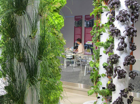 Inside Peek at O'Hare Airport's Vertical Farm | Urban Gardens | Unlimited Thinking For Limited Spaces | Urban Gardens | Vertical Farm - Food Factory | Scoop.it