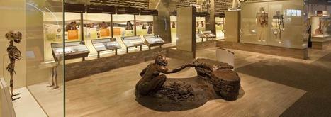 The Smithsonian Institution's Human Origins Program   Smithsonian - National Museum of Natural History   Kiosque du monde : A la une   Scoop.it