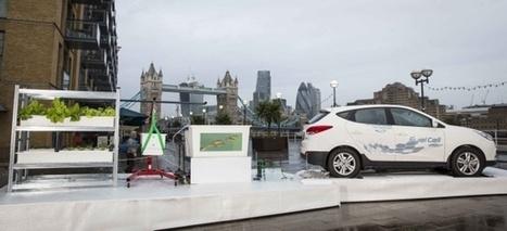 Hyundai Unveils World's First Aquaponics Farm Powered by a Fuel Cell Car — City Farmer News | Aquaponics~Aquaculture~Fish~Food | Scoop.it