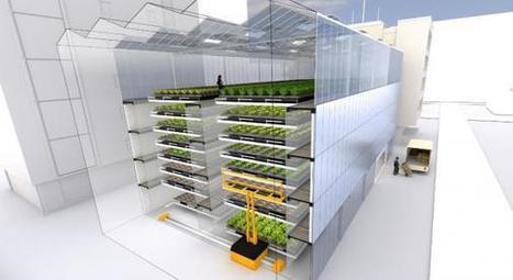 Lyon - Les fermes usines à légumes arrivent en France   L'usager dans la construction durable   Scoop.it