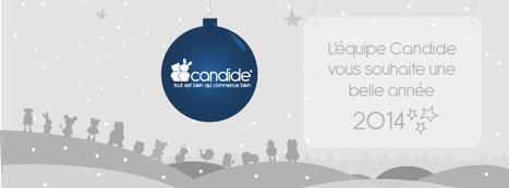 Toute l'&eacute;quipe Candide vous souhaite une belle ann&eacute;e 2014.<br/><br/>A tr&egrave;s bient&ocirc;t pou... | CANDIDE | Scoop.it