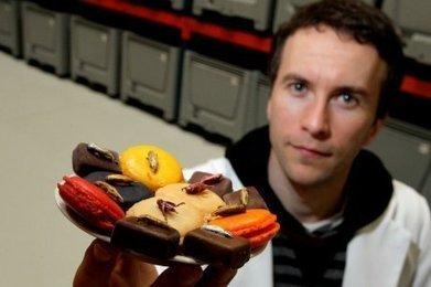 Alimentation : les insectes ont de l'avenir dans nos menus   Entomophagy: Edible Insects and the Future of Food   Scoop.it