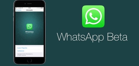WatsApp al lavoro per sviluppare la condivisione di file via chat - HeartBit | filesharing | Scoop.it