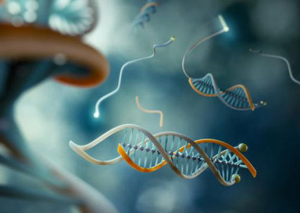 Nanomedicine: DNA clamp to grab cancer before it develops | Chasing the Future | Scoop.it