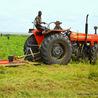 Agriculture en RDC - République Démocratique du Congo