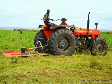 Bukanga Lonzo: les 140 agents licenciés décrient leurs décomptes finals | Agriculture en RDC - République Démocratique du Congo | Scoop.it