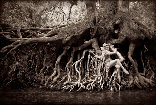 Kirsty Mitchell's Interesting Photography | inspiration photos