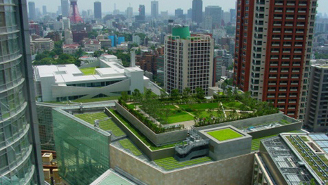 Green Roof Vs. Cool Roof - CBS New York | Jardines Verticales y azoteas verdes. | Scoop.it