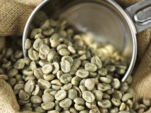 Caffè verde: il chicco che fa ripartire il metabolismo - LeiWeb | Nutraceutica | Scoop.it