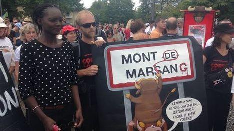 Mont-de-Marsan : au moins 800 manifestants anticorrida, soutenus par Rama Yade - France Bleu Gascogne | Actualités écologie | Scoop.it