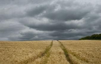 Le marché immobilier rural n'échappe pas à la crise | IMMOBILIER 2015 | Scoop.it