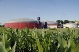 Renewable Energy for Farmers - Nicholas Newman | energy journalist | Scoop.it