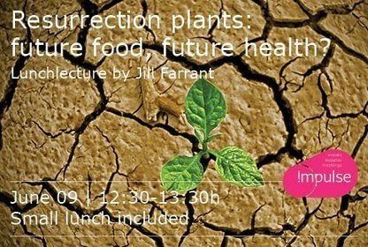 Lecture of JillFarrant: Resurrection of plants: future food, future health? | Wageningen Seed Lab | Scoop.it