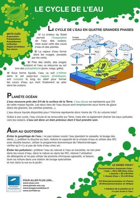 Le-cycle-de-l-eau.jpg (2480x3507 pixels) | svt pollution de l'eau et risque pour la santé mars 2013 | Scoop.it