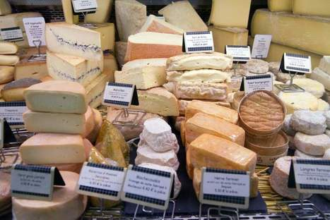 "Here's Your New Science-Backed Reason to Eat More Cheese (it provides food for the good bacteria"") 