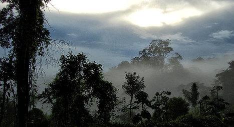 Triplo A: a nova ameaça à soberania brasileira na Amazônia /  mto curioso | Saif al Islam | Scoop.it