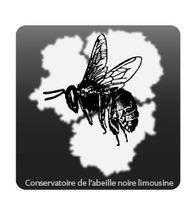 Conservatoire de l'abeille noire limousine | abeille noire | Scoop.it