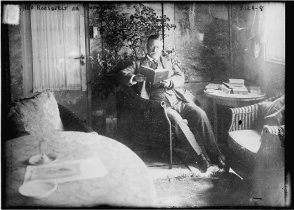 The Libraries of Great Men: Theodore Roosevelt's Reading List | Marketing, Management & Money | Scoop.it