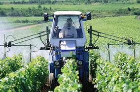 Pesticides : l'exposition au DDT augmenterait le risque d'Alzheimer | Indignons nous : la dégradation de l'environnement impacte notre santé | Scoop.it