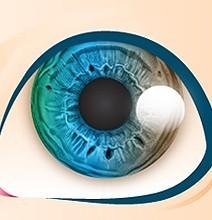 Hva øyenfargen din kan avsløre (Engelsk) | Bit Rebels | A New Society, a new education! | Scoop.it