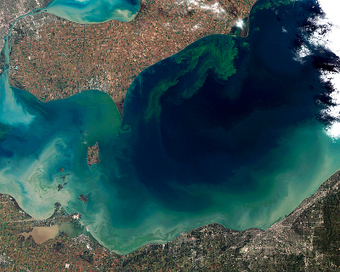 Giant Mats of Green Slime in Lake Erie Signal a Need for New Economic Approaches to Pollution | Sustainable Futures | Scoop.it